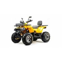 Сборочный комплект квадроцикла MotoLand WILD TRACK X PRO 200