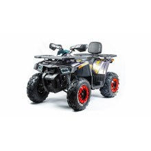 Сборочный комплект квадроцикла MotoLand WILD TRACK X 200