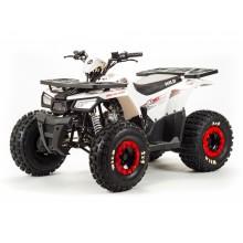 Сборочный комплект квадроцикла Motoland WILD 125 A