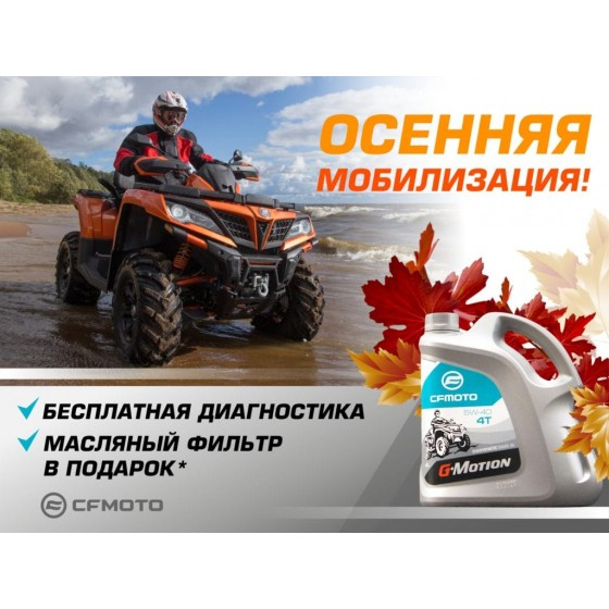 «Осенняя мобилизация – 2020!»